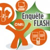 cfdt_enqueteflash_2013
